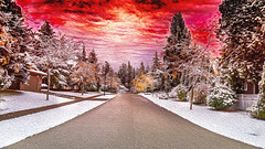 The Road to Hell (RussellK2013) Tags: oilpainting oilpaintingfilter nikon nikkor 1635mm ngc streetscene dramatic picture picturesque snow suburbia trees road autumn snowfall d750