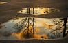 Refreshing (Matt Champlin) Tags: autumn fall peace peaceful nature beautiful quiet calm calming sunset evening refreshing green trees field rural cny skaneateles 2017 canon upstatenewyork