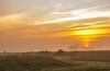 Petit soleil normand (jérémydavoine) Tags: normandie montsaintmichel sunrise levédesoleil paysage campagne nature sun soleil sky ciel fog brouillard