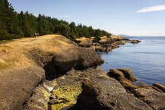 Helliwell (Carrie Cole Photography) Tags: bc britishcolumbia canada carriecole carriecolephotography helliwellprovincialpark hornbyisland vancouverisland hike hiking landscape nature outdoors pacific pacificnorthwest park scenic tourism water westcoast