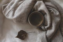 (CarolienCadoni..) Tags: sony sonyilcaa99m2 coffee still autumn light fall photography stillife 2470mmf28zassm sal2470f28