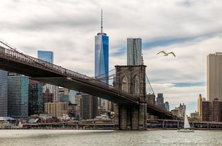 New York City: A View of Lower Manhattan
