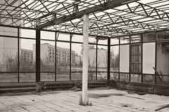 _MG_8223 (daniel.p.dezso) Tags: kiskunlacháza kiskunlacházi elhagyatott orosz szoviet laktanya abandoned russian soviet barrack urbex ruin shop military base militarybase