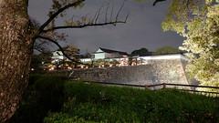 Osaka Castle (Toni Kaarttinen) Tags: japan 日本 japonia اليابان японія япония japó japonsko jaapan ژاپن japani japon xapón ιαπωνία יפן जापान japán jepang an tseapáin giappone 일본 japāna japonija јапонија japão јапан japonska japón hapon ประเทศญี่ปุ่น japonya nhật bản japanese kansai holiday vacation castle osakacastle 大阪城 sakura hanami cherry blossoms cherryblossoms