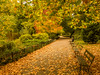 Autumn (Your Funny Uncle) Tags: london england unitedkingdom gb autumn automne otoño batterseapark battersea park bench benches leaves
