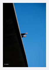 back there (K.Rahn) Tags: autobahn autobahnbrücke baustelle bauuntersuchung bauwerk begutachten begutachtung beton betonbrücke betonpfeiler betonsanierung betonträger brücke brückenbau brückenbauwerk brückenkörper erneuern erneuerung fahrbahn gerüst gerüstbau hochbau infrastruktur instabil instandsetzen instandsetzung kaputt marode modernisieren modernisierung pfeiler plattform reparieren sanieren sanierung strasse strassenbau strassenbrücke substanz tragfähig tragfähigkeit träger untersuchen untersuchung verfallen von unten zerfallen überlastet überlastung überprüfung fotorahmen diagonale himmel architektur linien