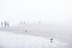 11072016-_DSC1808 (Paula Marina) Tags: beach brasil brazil bruma inverno litoral neblina nevoeiro névoa pg praiagrande winter