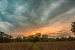 Path to the Sunset (thefisch1) Tags: sunset path pathway trail sky cloud horizon tree line grass pasture bluestsem blue stem