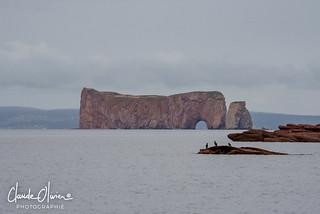 Rocher Percé, Percé, Gaspésie