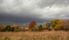 Fall Thunderstorm (thefisch1) Tags: thunder prairie blue stem grass horizon fall color tree cloud ominous storm