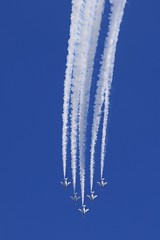 Nose Dive (seiji2012) Tags: 入間航空祭 エアショー ブルーインパルス 青空 航空自衛隊 irumaairshow aerobatics aerialacrobatics blue sky japaneseselfdefenceforce saitama 埼玉県 jet airplane