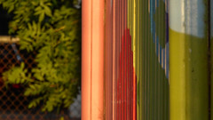 Afterschool Colours (Theen ...) Tags: adelaide afterschoolcare bushes classroom fence green lime lumix murals new orange paint red theen torrensvilleprimaryschool