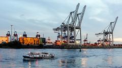 Hamburger Hafen (petra.foto busy busy busy) Tags: hamburg hafen elbe container krähne schiffe abendlicht fotopetra canon 5dmarkiii