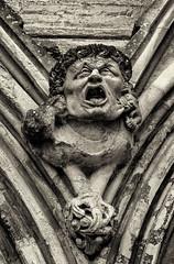A very unhappy gargoyle (David Feuerhelm) Tags: statue monochrome sepia gargoyle expression nikkor building cathedral sailsbury wiltshire england nikon silverefex d750 2470mmf28