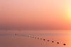 pink sunrise (sosap kirilov) Tags: море2017 портфолио sunrise sunset pink sea canon eos 1000d efs 55250