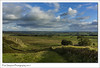 Northumberland (Paul Simpson Photography) Tags: northumberland northumbria hadrianswall nature green england countryside romanempire roman country rural paulsimpsonphotography wall september sonya77 sonyphotography clouds 2017 viewsof imagesof imageof photoof photosof escapetothecountry english