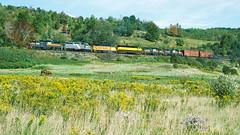 7418_9_24_crop2_clean (railfanbear1) Tags: locomotive dh
