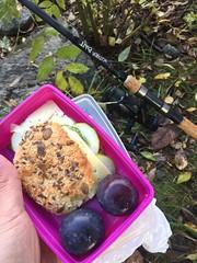 Fiskelunch 9/10 (Atomeyes) Tags: mat fralla frukt ost gurka fiske plommon