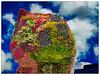 Puppy - Jeff Koons - Guggenheim Bilbao (Guillermo R.) Tags: 2016 agosto airelibre animal animalesdomésticos arcos bilbao borde calle cieloazul ciudad ciudaddeinterior detallearquitectónico dia digital edificio edificiosderecreo escultura españa europa fotografia fotografiar hdr hemisferionorte horizontal mamífero mediciónpuntual mediodía museo museoguggenheim paísvasco perro pm raw soleado tiempodeexposición turismo turista verano vizcaya
