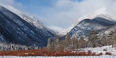 Winter Valley (Matt Thalman - Valley Man Photography) Tags: colorado nationalpark rmnp rockymountainnationalpark cold cool forest landscape mountain mountains snow snowscape snowy trees winter