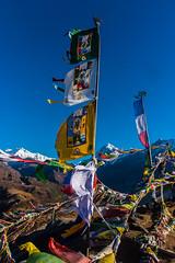 Gocha-la trek in Sikkim, India (David Ducoin) Tags: asia dzongri gochala hike himalaya india kangchenjunga nationalpark sikkim trek wind gangtok in