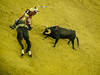 Bullfighting in Nazaré (Alberto Pérez Puyal) Tags: bullfighting portugal nazare bull torero horse sand ring plaza touro touros alberto perez puyal 2017