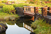 DSC33_16791 (heartinhawaii) Tags: bridge fishpond lavarocks plants green lush garden hawaii bigisland kohalacoast aneahoomalubay waikoloamarriott resort nikond3300 magichour goldenhour