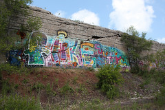fake culture rip (virgilvanburen) Tags: chicago architecture midwest midwestern abandoned illinois city south side safety ore walls nature taking over back lovely fall autumn photography photo picture