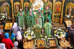 Преподобного Сергия (54)