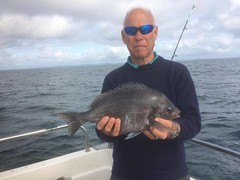 "Mike Hansell 3lb 3ozs Black Bream • <a style=""font-size:0.8em;"" href=""http://www.flickr.com/photos/113772263@N05/37402107602/"" target=""_blank"">View on Flickr</a>"