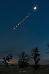Magic Wand (TierraCosmos) Tags: solareclipse madras totality sun solartown trees totaleclipse eclipse oregon centraloregon 2017eclipse