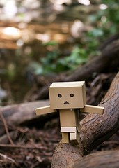 Tightrope (erichbumgarner) Tags: green tightrope danboard danbo redwoods redwood tree toy action figure river branch forest