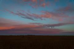 Sunset Colours with Moon (Matt 23998) Tags: sunset beausejour manitoba sundown moon farm brush weeds fields field