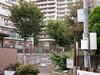 _1400654 (strange_hair) Tags: tokyo japan street kotoku apartment osamu park