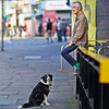 you wait wit dog love ill only be 2 minutes (Mick Steff) Tags: man dog waiting street urban colour companion wife shopping manchester