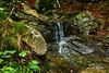 Across the rain forest (fede.piste) Tags: forest rain italy abetone colors sony alpha 6000 path water bosco landschaft landscape