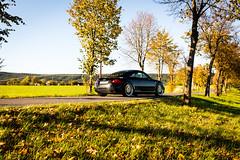 Audi TT 8n on Ispiri CSR1D (Felix Gellendin) Tags: audi tt 8n ispiri csr1d 179hp hr low lowered kcustom gewindefahrwerk coilovers stance stanced wheel wheels felgen blackgold black gold thüringen germany germancars