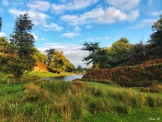 Autumn in Bradgate Park