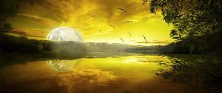 Yellow sun 1