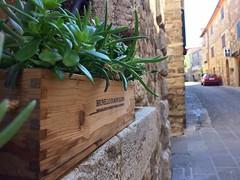 Good morning Castelnuovo dell'Abate, In the heart of Brunello di Montalcino area! 😍🍷 #like #follow #castelnuovodellabate #borghetto #montalcino #tuscany #italy #discover #travel #medioeval #enjoy (borghettob) Tags: like follow castelnuovodellabate borghetto montalcino tuscany italy discover travel medioeval enjoy