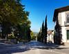 Road to the Castle - Guimaraes (ShambLady) Tags: guimarães guimaraes portugal braga road cypress shadows shade tranquil 260717 july town