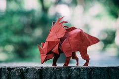 styracosaurus 戟龙 (welkin tan) Tags: origami