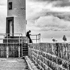 Au pied du phare (Lucille-bs) Tags: europe france bretagne belleîleenmer lepalais 500x500 phare jetée mouette oiseau homme silhouette nuage escalier fumeur