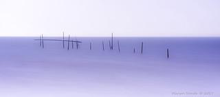 Visserspaaltjes van Rockanje -