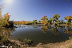 Fall on the Carson River (dwight g) Tags: canon 6d 815 fisheye river fallcolorreflectionspstopaz