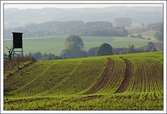 Herbstackerland bei Blomberg (Lippe) (hjhoeber2) Tags: blomberg ostwestfalen germany deutschland acker herbst autumn lippe teutoburgerwald zeiss sonnar sonnart18135 za sony a6000