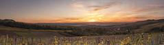 2017-panorama-Irancy-89 (dangui89) Tags: vignes raisins village église france bourgogne yonne89 irancy côtesauxerre guillierdanielphotofr