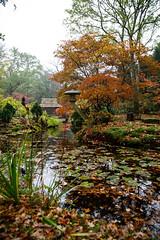 IMG_3091 (TvdMost) Tags: huysclingendael japansetuin landgoedclingendael