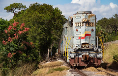 WRRX 1030 (tjm6515) Tags: railroad locomotive railway florida seaboard system orlando northwestern royal palm experience gp30