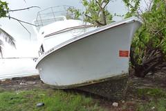 Maria ESF-10 PR Unified Command responders evaluate damaged vessels in Puerto Rico (Coast Guard News) Tags: mariaesf10pr hurricanemaria coastguard puertorico departmentofnaturalandenvironmentalresources dner unitedstates us